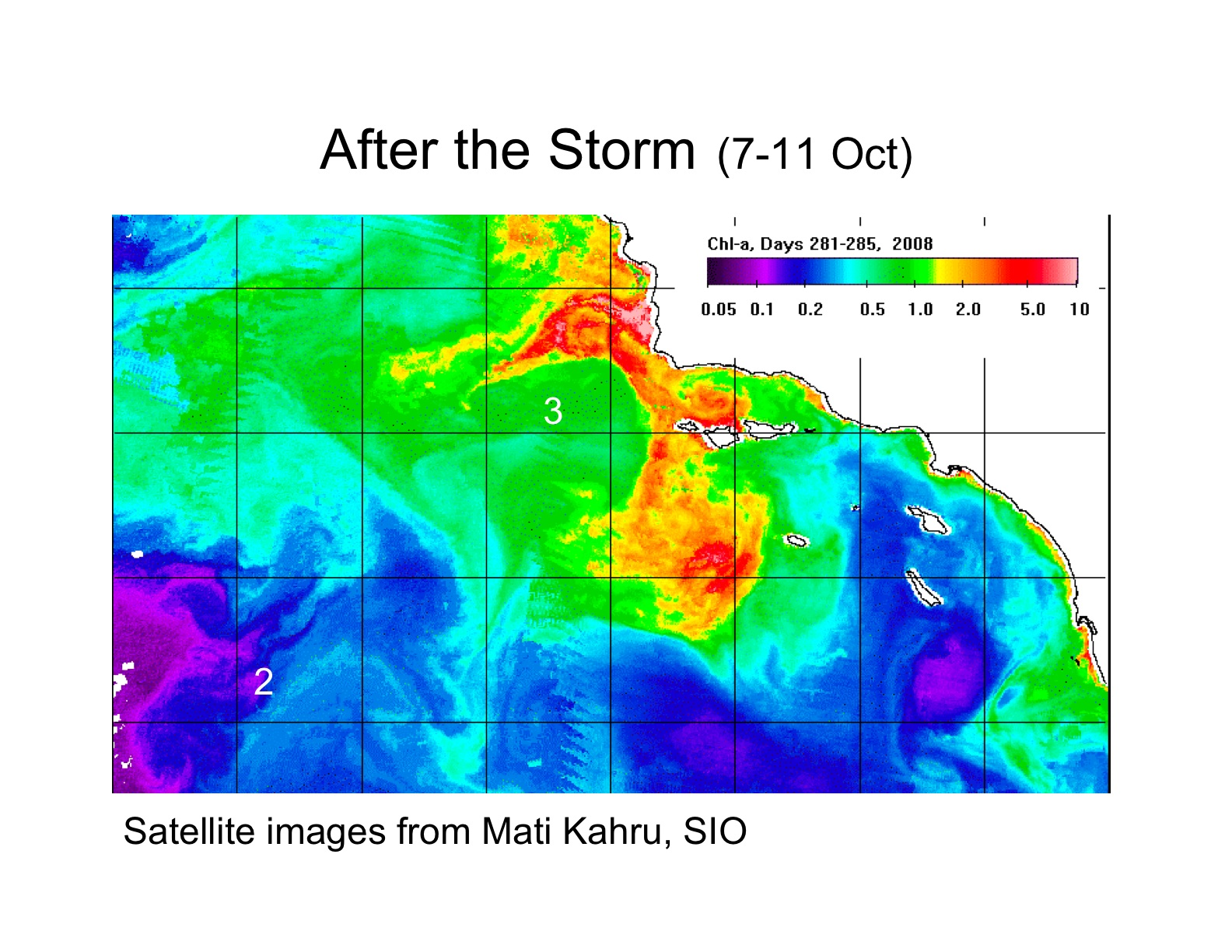 Satelite image of chlorophyll abundance in the CCE after the wind and swell event